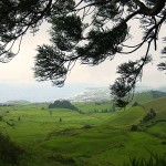 The Azores Countryside