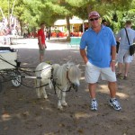 Big Guy, Small Horse at the Park in Palermo