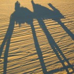 Caravan Shadows on the Sahara