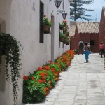 A Residential Street of the Santa Catalina Monastery