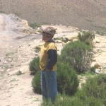 A Young (very young) Shepherd on the Altiplano