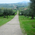 The Approach to Montgiove