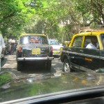Taxis Abound on City Streets