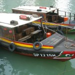 Bum Boats Ferry Service