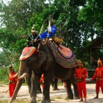 Ceremonial Re-enactment at the Elephant Village