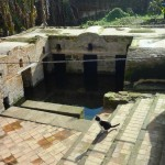 The Fertility Pool at the Chellah