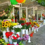 Flower Market at Ruse