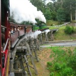 Puffing Billy on a Trestle near Belgrave