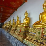 A Gallery of Buddhas