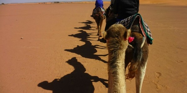 Morocco Part 1: Casablanca to the Sahara